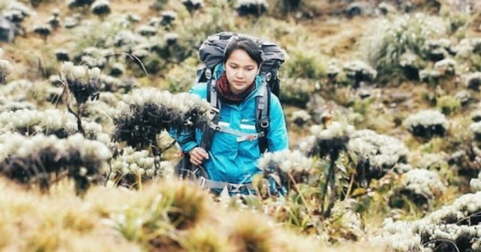 Jejak Pendakian Gunung Gede – Pangrango