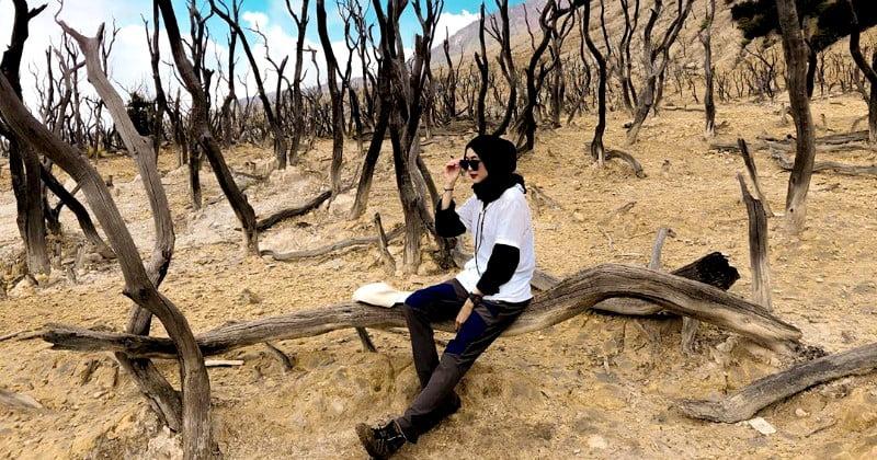 Hutan Mati, Destinasi yang Wajib Dikunjungi di Gunung Papandayan