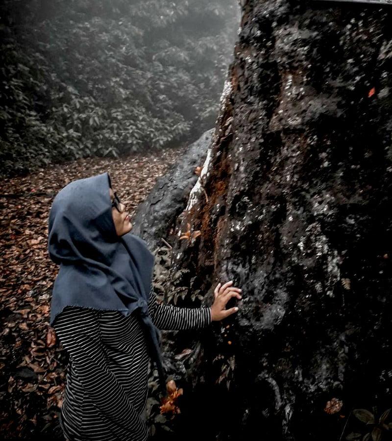 Misteri Gunung Lawu yang Menjadi Sensasi Bagi Pendaki