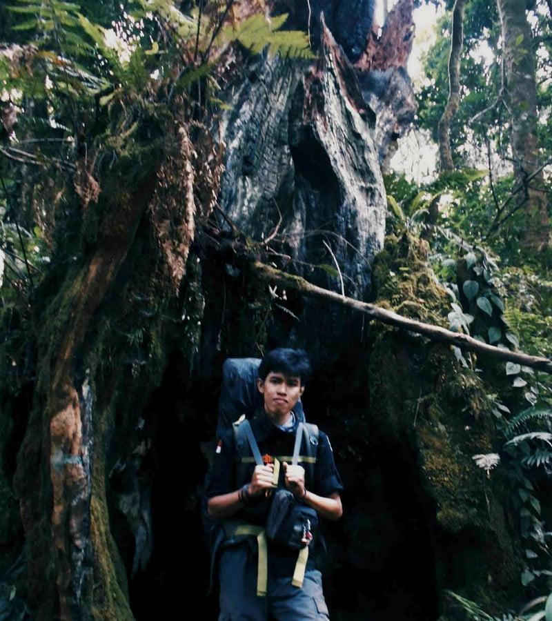 Cerita Menyeramkan Soal Pohon Bolong di Gunung Kerinci