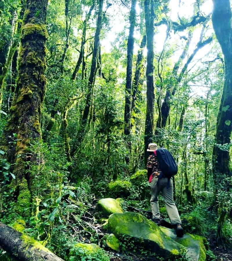 Cerita Tentang Noni, Pendaki Cantik Penghuni Gunung Bawakareng