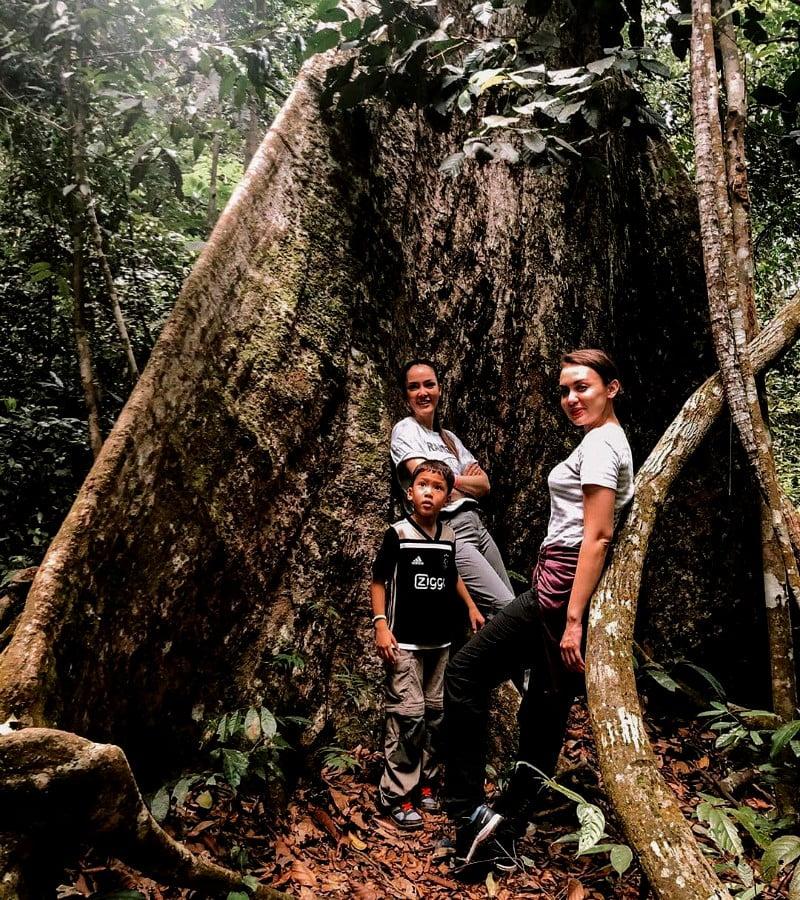 Fakta dan Misteri Gunung Leuser yang Wajib Kamu Tahu