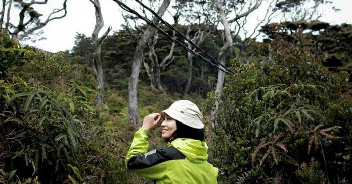 Kisah Bertemu Kakek Penjaga Hutan di Gunung Singgalang