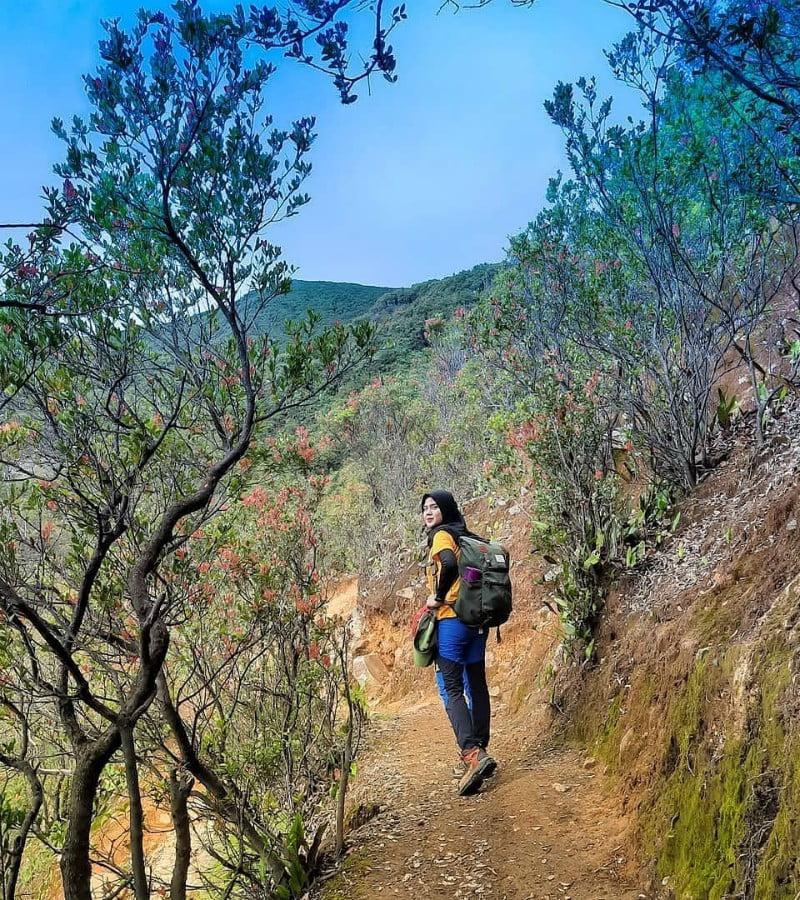 Jalur dan Estimasi Waktu Pendakian Gunung Leuser