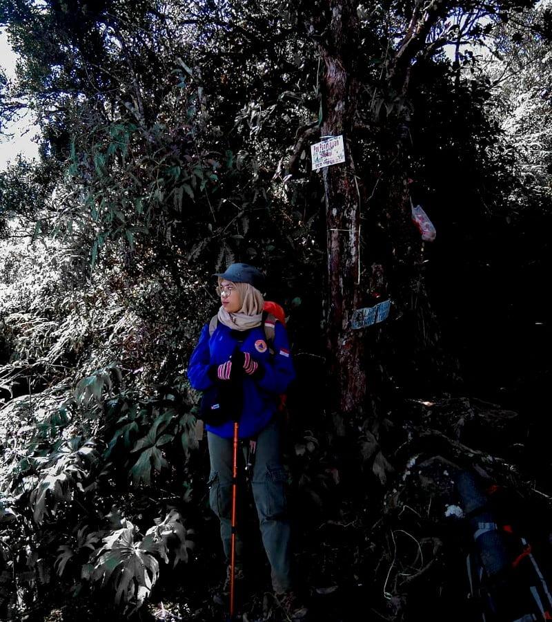 Talamau, Gunung Cantik Dengan Banyak Telaga di Sumatra