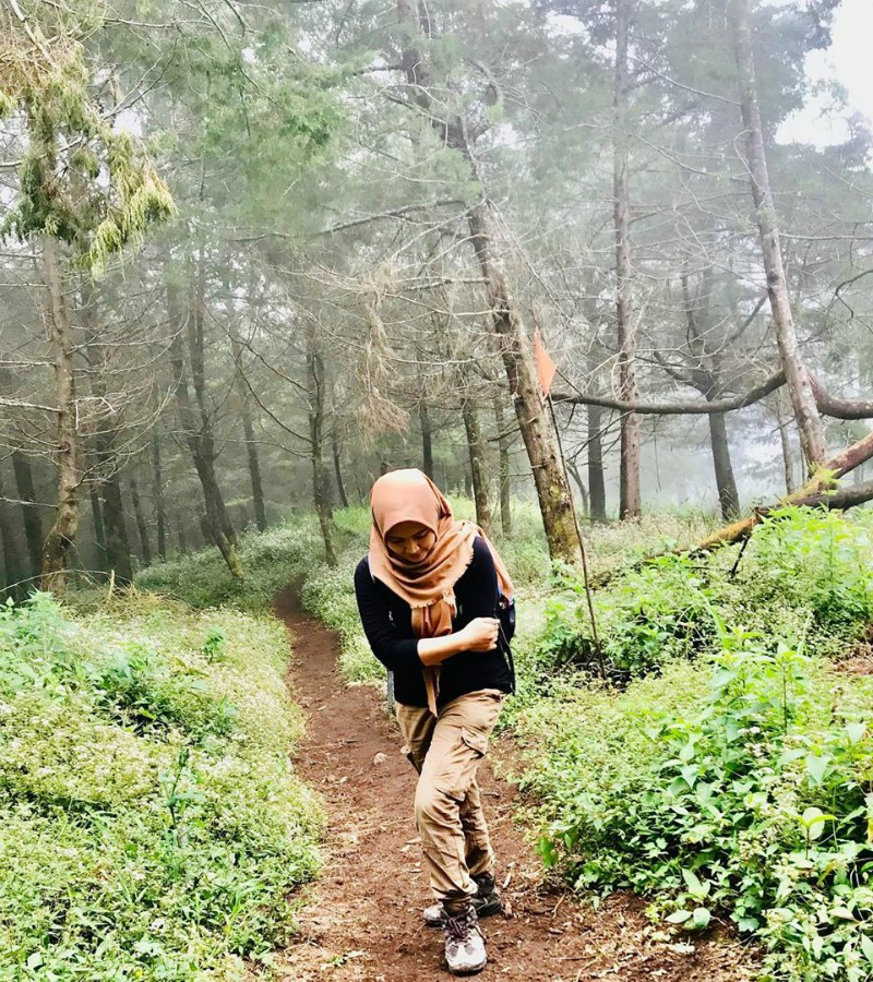 Ulasan Lengkap Soal Jalur Pendakian Gunung Sumbing